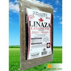 LINAZA+ALCACHOFA 425 GR * GARPO