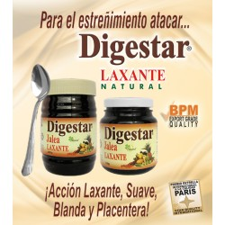 DIGESTAR JALEA * 300 GR NATURAL FRESHLY