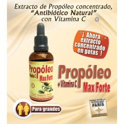 PROPÓLEO MAX FORTE 60 ML *NATURAL FRESLHY